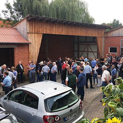 Erste Begrüßungsgespräche der großen Limousinfamilie auf dem Betrieb Wigbert Jost (Eiterfeld-Großentaft)