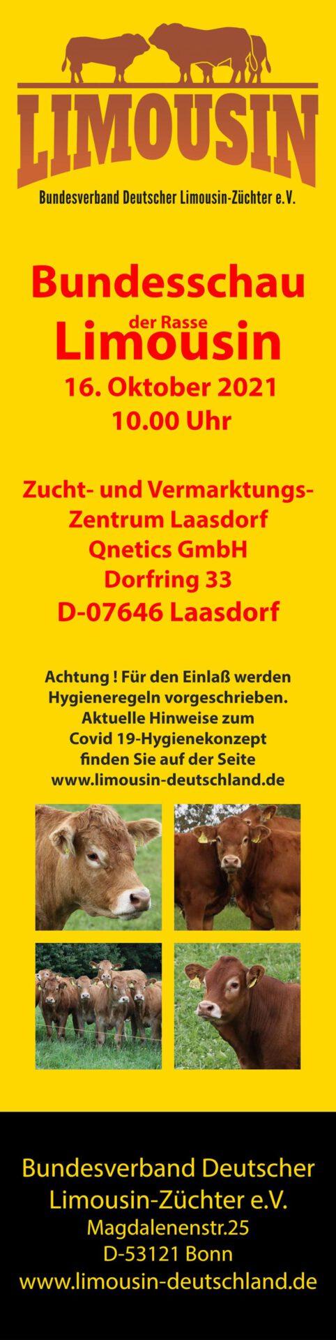Bundesschau-Limousin_2021
