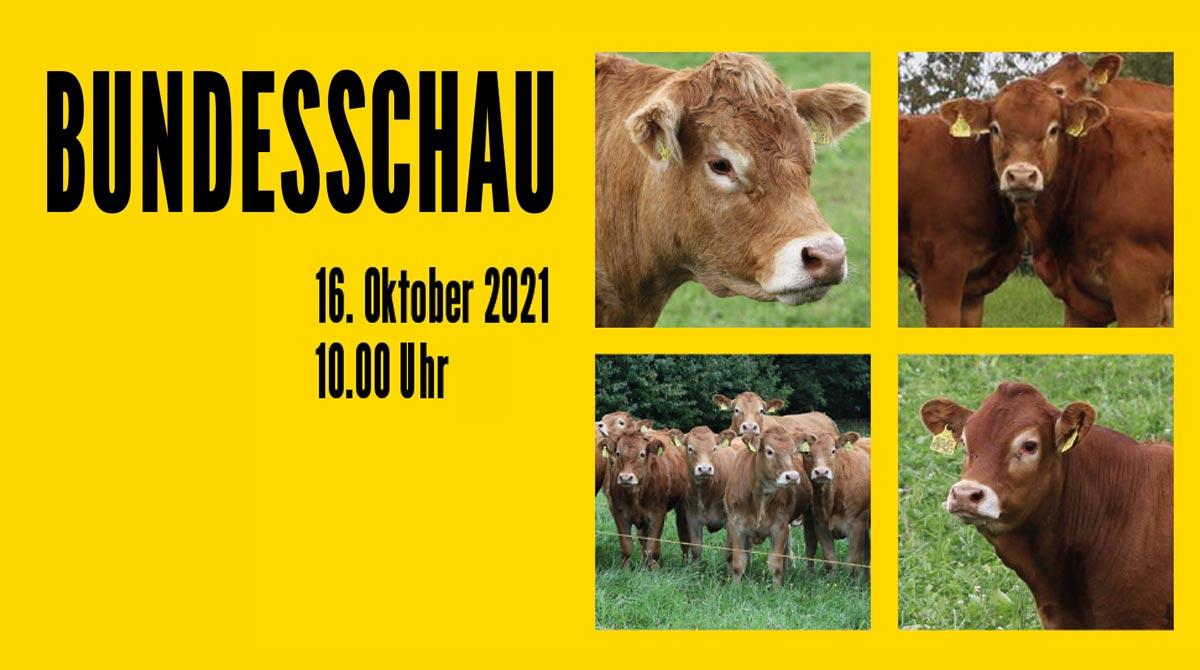 BDL_Bundesschau2021_News